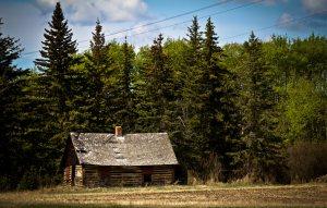 Homestead - Berwyn, Alberta
