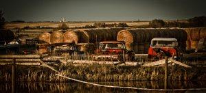 Interchangeable, Early Sixties GMC Half Tons - Fairview, Alberta