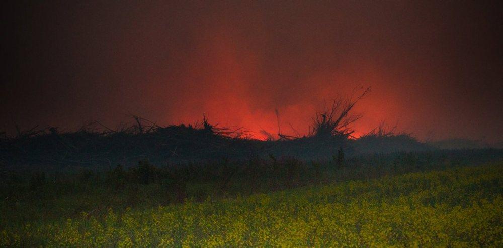 Wilson Prairie Wildfire (2/6)