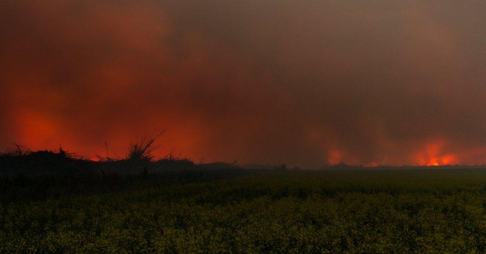 Wilson Prairie Wildfire (4/6)
