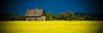 Homestead Amongst Canola 4 - Fort Vermilion, Alberta