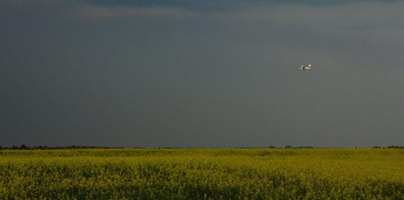 2 Wilson Prairie Wildfire - La Crete, Alberta