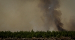 Water Slinging 12 - Wilson Prairie Fire, La Crete, Alberta