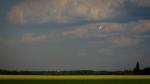 Tanker Lead Plane 2 - Wilson Prairie Fire, La Crete, Alberta
