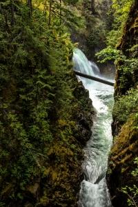 Gorge - Englishman River Falls, British Columbia