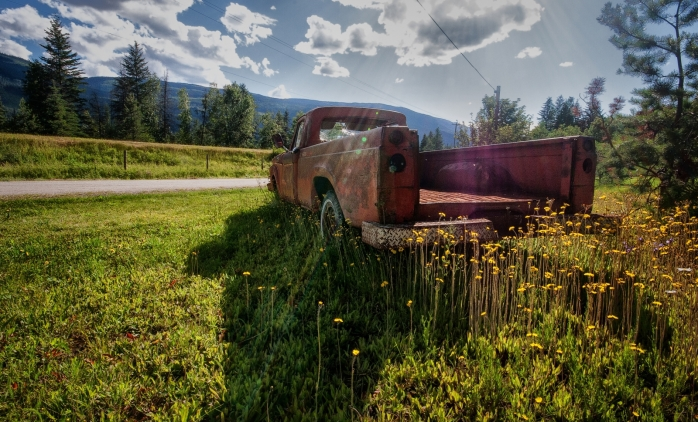 Ford Among Fords - Vavenby, British Columbia