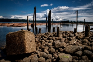 Log Boom - Close to Courtenay, British Columbia