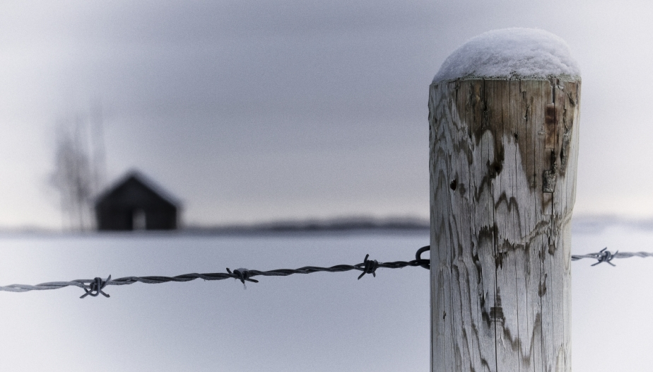 Fence Post and Homestead