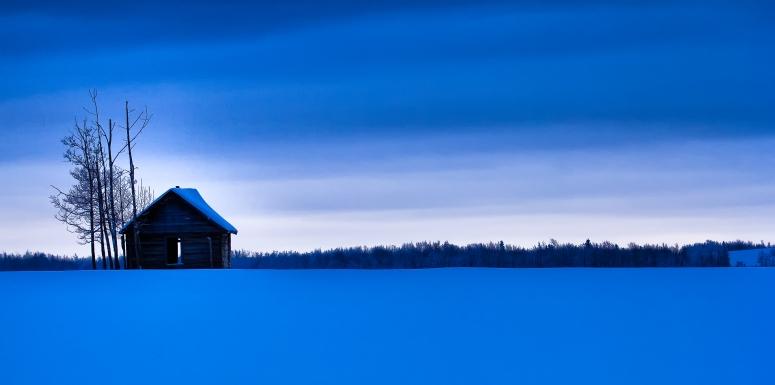 Winter Skies 1