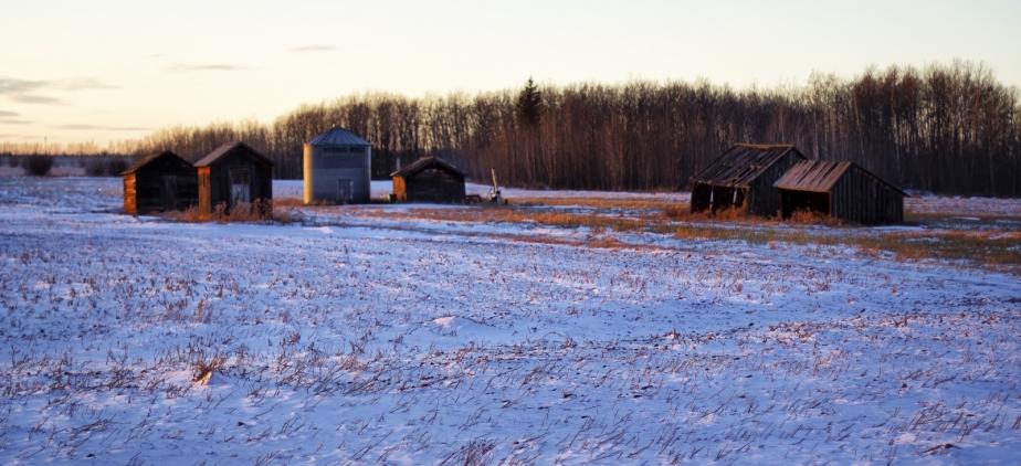 7 Farming Buildings - Nampa, Alberta 1