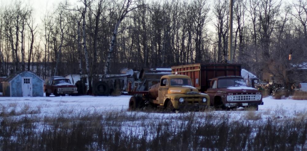 8 Ford & Mercury Trucks 1