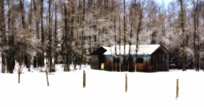 Former Farm 2