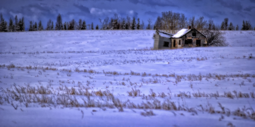 Former Farm - Sangudo, Alberta 2
