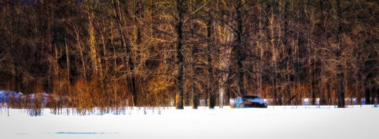 Sedan Among Trees - Valleyview, Alberta 1