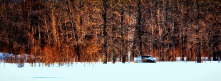 Sedan Among Trees - Valleyview, Alberta 2