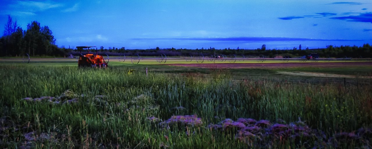 Sod Farm - High Level, Alberta