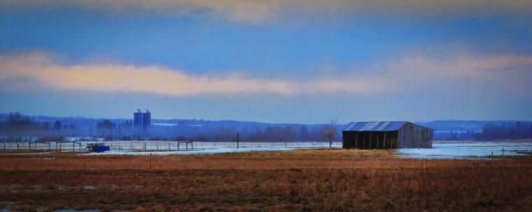 Farm - Rimbey, Alberta 2