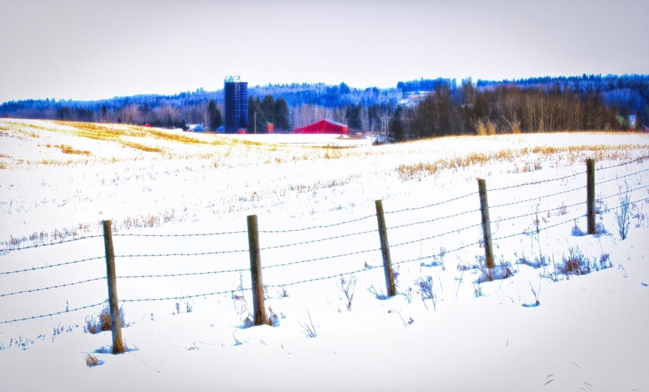 Farm - Rimbey, Alberta