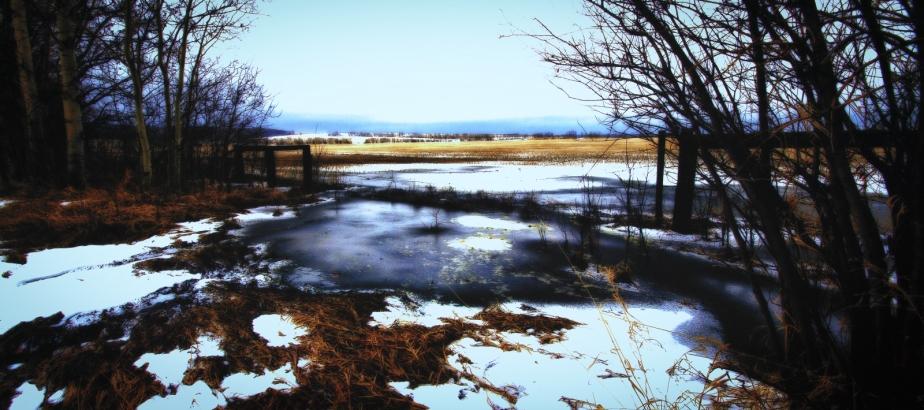 Field Entrance - Woking, Alberta