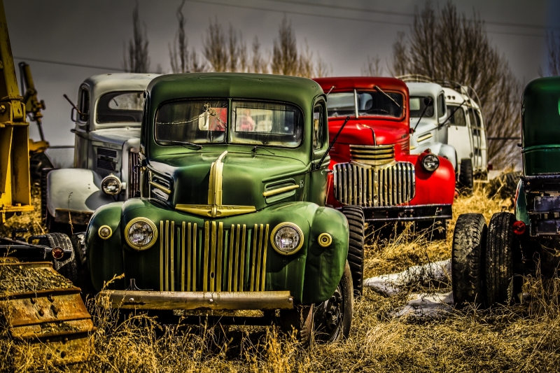 47 Ford Among Trucks - Sangudo, Alberta