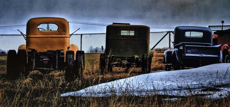 Waiting - Looking On, Sangudo, Alberta