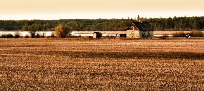 Homestead - Fort Vermilion, Alberta 2