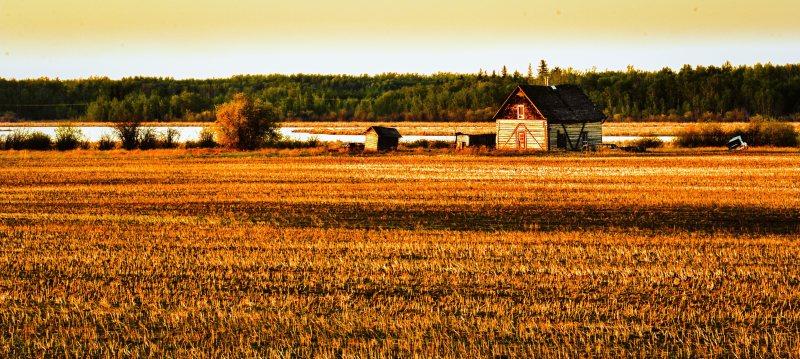 Homestead - Fort Vermilion, Alberta 3