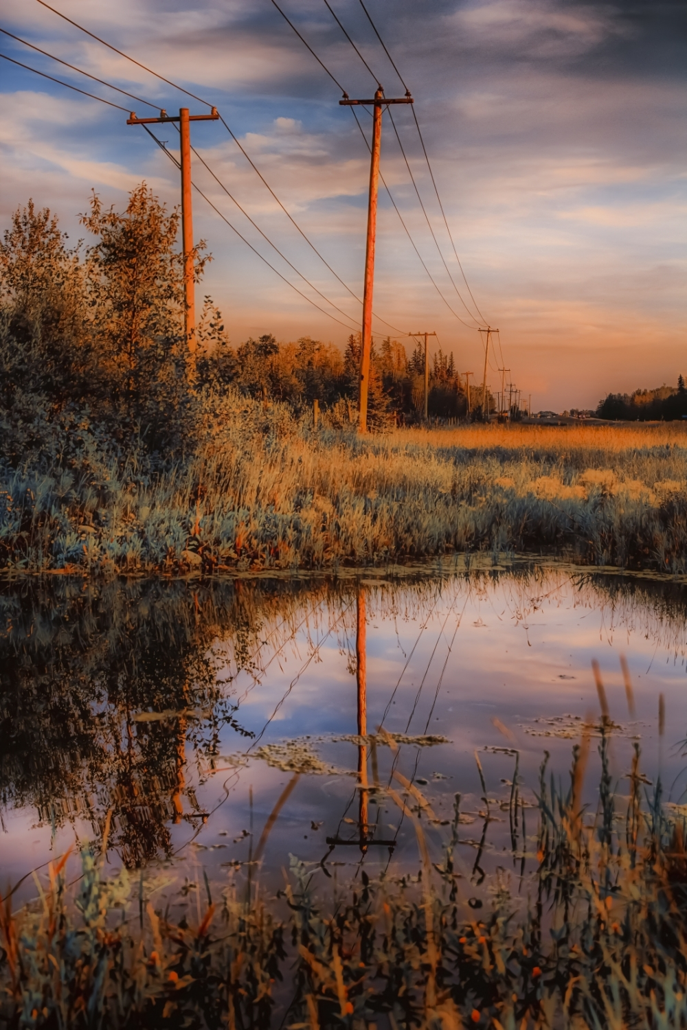 Alberta Reflection - Grande Prairie 3