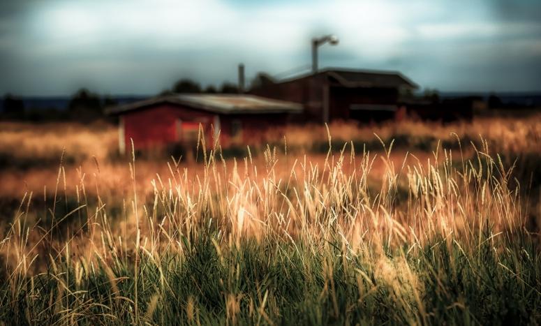 Derelict Farm Buildings - Valleyview, Alberta