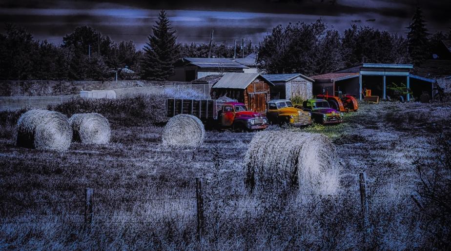 Field Shared - Greencourt, Alberta 2