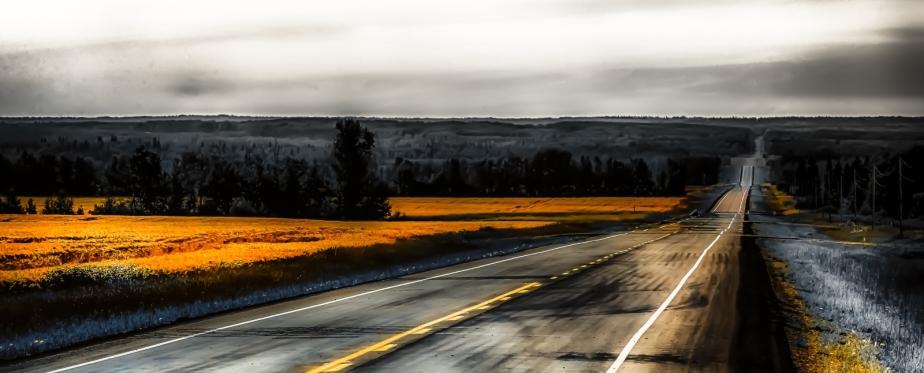 Grain Field - Valleyview, Alberta