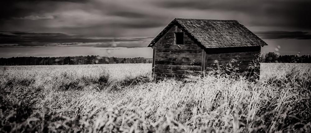 Grain Bin - Dixonville, Alberta 1