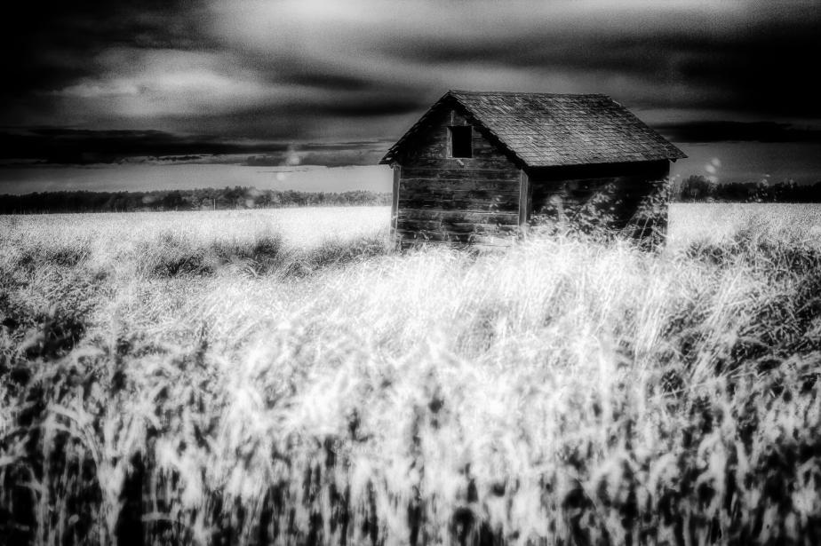 Grain Bin - Dixonville, Alberta 3