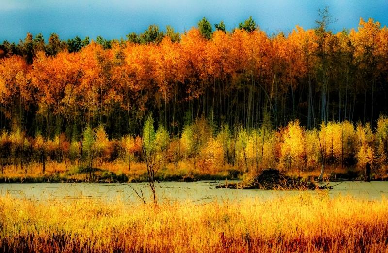 Morning Colours - Keg River, Alberta 1