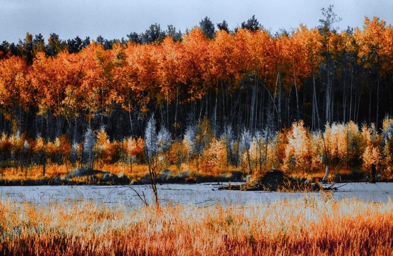 Morning Colours - Keg River, Alberta 2
