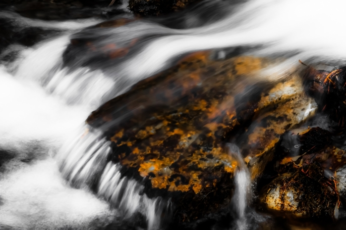 Water Lens - Kananaskis, Alberta 5