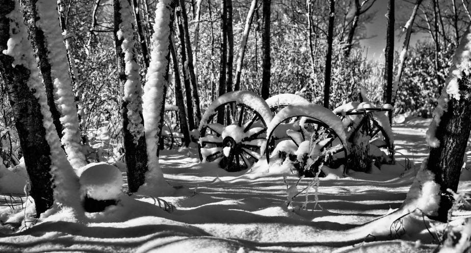Wagon Wheels - McNaught Homestead 2