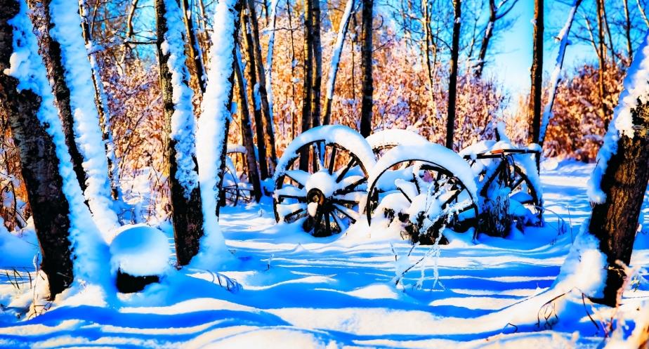 Wagon Wheels - McNaught Homestead 3