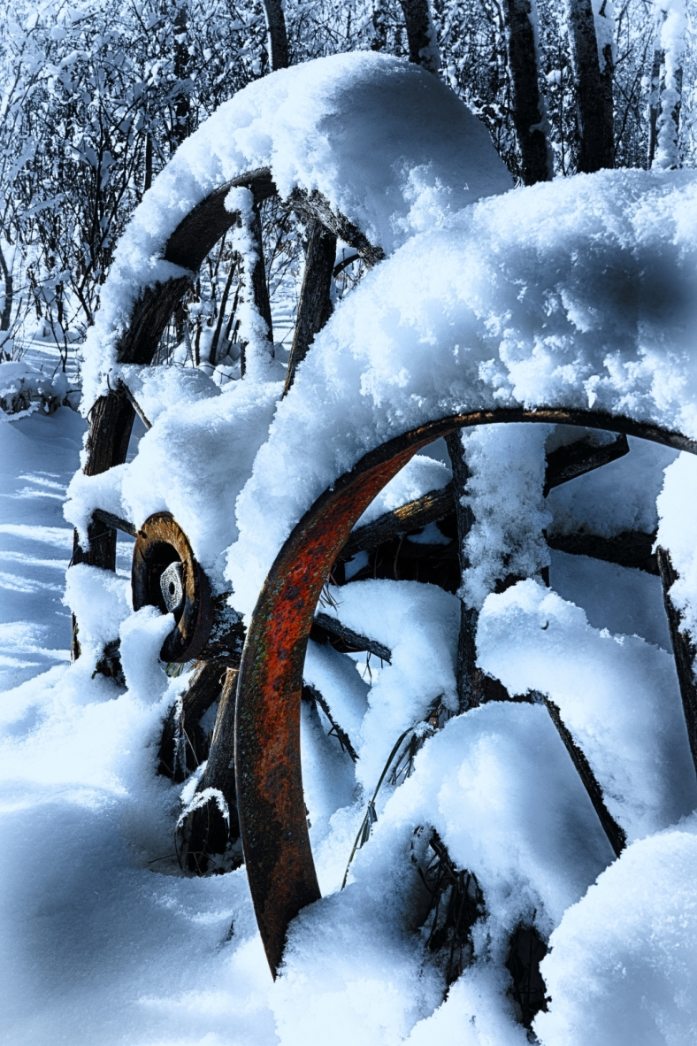 Wagon Wheels - McNaught Homestead, Beaverlodge, Alberta 1