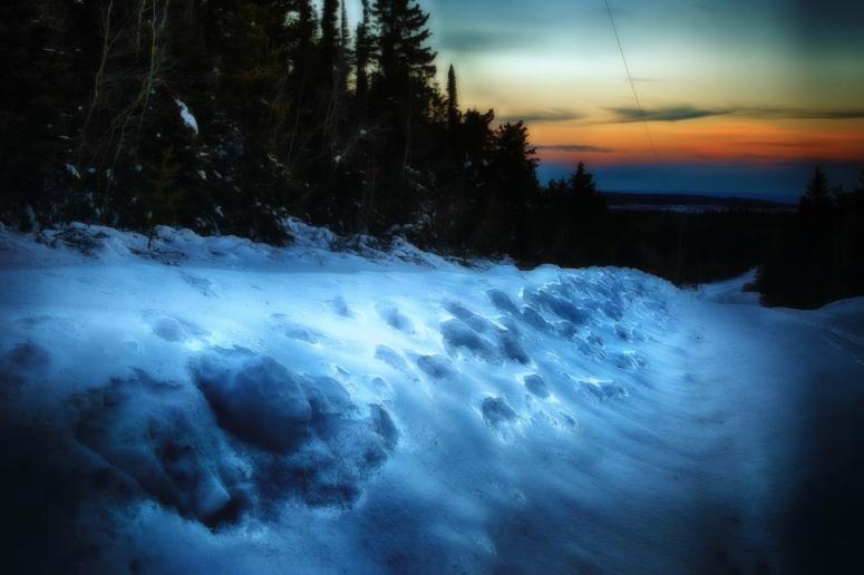 Watt Mountain Ice - High Level, Alberta 2