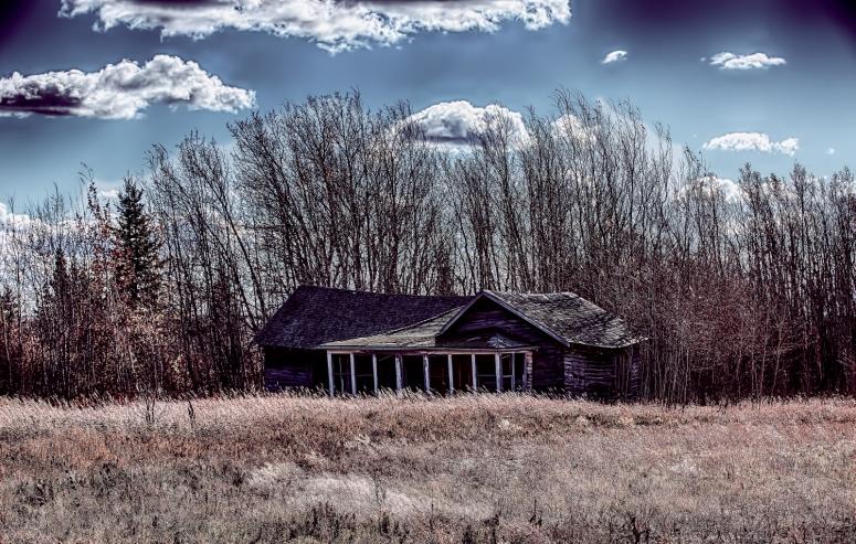 Autumn's Desaturation - Rycroft, Alberta 2