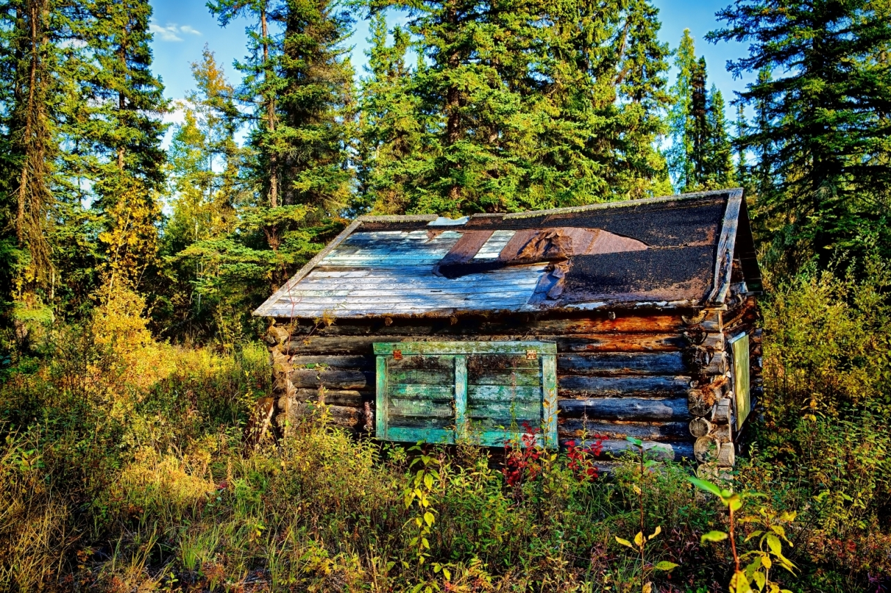 Trapper's Cabin - Near Indian Cabins, Ab 2