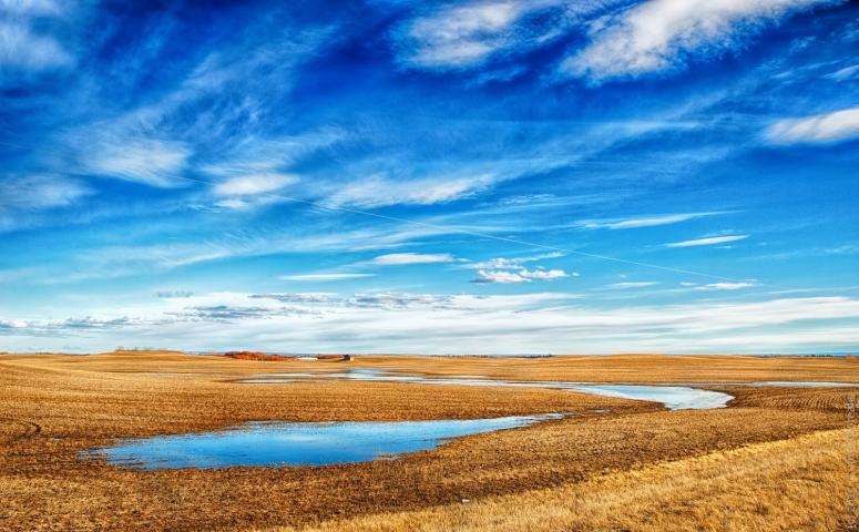 Spring's Rolling Hills - Near Rycroft, Alberta - Canada 1
