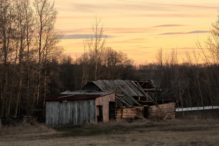 Homestead - La Glace, Alberta - Canada 4