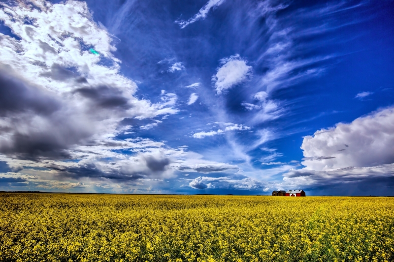 Canadian Grain Bin - Guy, Alberta, Canada 1