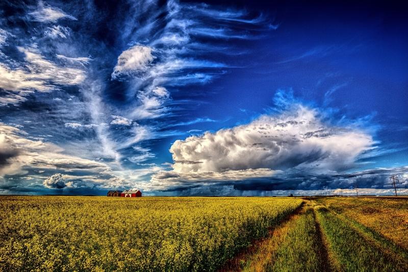 Canadian Grain Bin - Guy, Alberta i