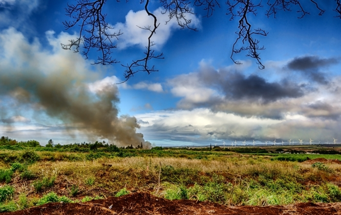 Plantation Fire - Haleiwa, Oahu