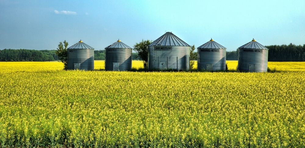 Westeel Grain Bins - Warrensville, Alberta, Canada