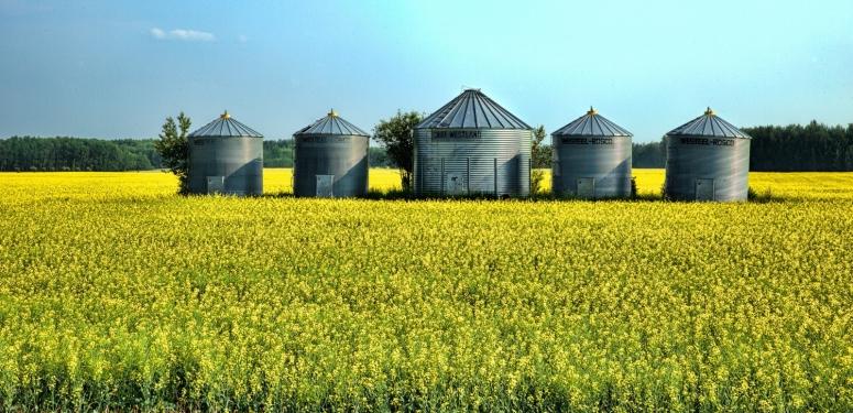 Westeel Grain Bins - Warrensville, Alberta, Canada