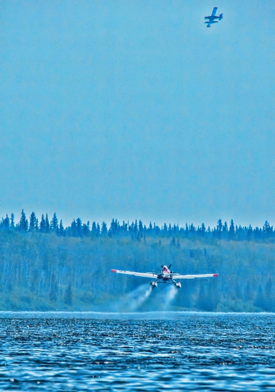 Wildfire - Hutch Lake, Alberta, Canada - 14
